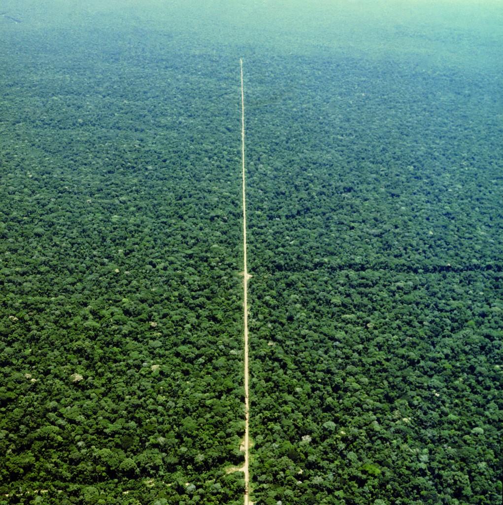 een weg in de brousse (Foto: Angelo Turconi)